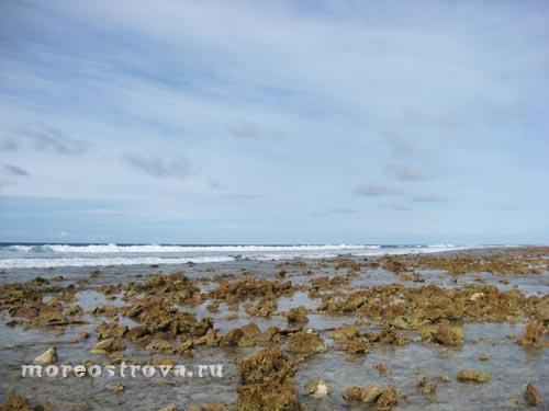 обнаженный во время отлива коралловый риф